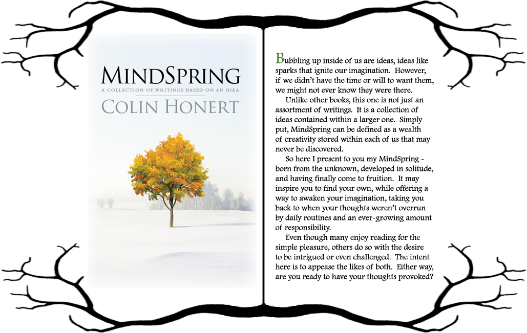 front and back cover of MindSpring book